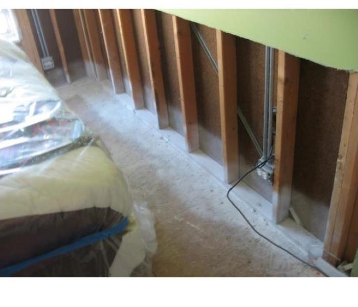 Mold infestation in Morton Grove After